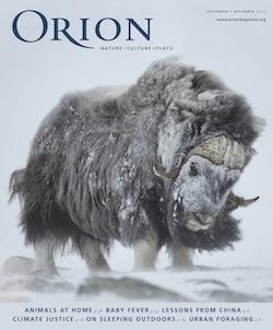 orionmagazine20151112-dl copy